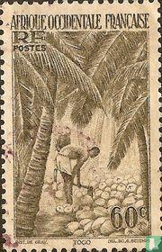 Pellen van kokosnoten