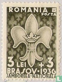 Nationales Jamboree in Brasov