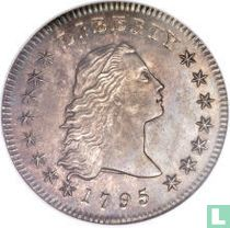 United States 1 dollar 1795 (flowing hair 2 leaves)