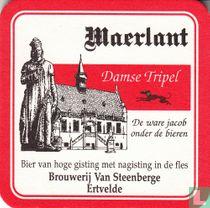 Maerlant - Damse tripel kopen
