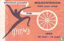 Internationaal Gymnastiek Festijn