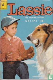 Lassie de trouwe vriend grijpt in!