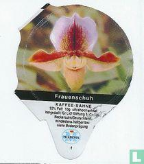 Heimische Blumen - Frauenschuh