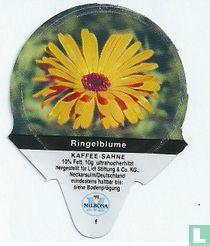 Heimische Blumen - Ringelblume