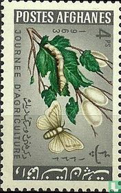 Afghanistan 1963
