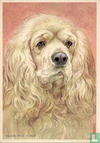 voor het kind-Hond: amerikaanse spaniel