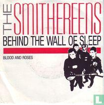 Behind the Wall of Sleep
