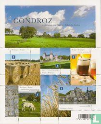 Belgischen Regionen (Das Condroz) kaufen