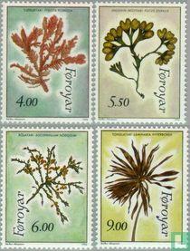 1996 Planten (FAR 96)