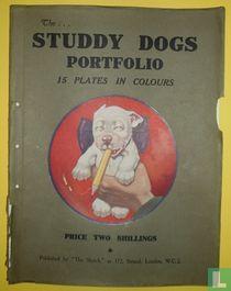 The... Studdy Dogs Portfolio