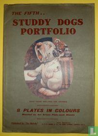 The Fifth... Studdy Dogs Portfolio