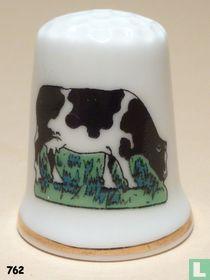 Dieren - Koe