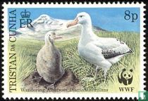 WWF - Reuzen Albatros