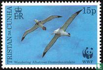 Wereld Natuur Fonds Vogels