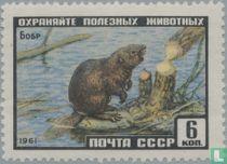 Russische wilde dieren