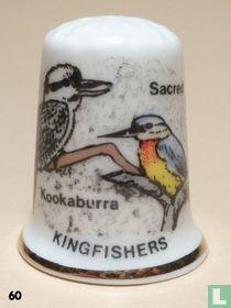 Kookaburra - Kingfishers
