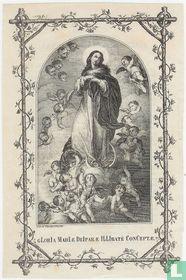 Gloria Mariae Deiparae Illibatè Conceptae