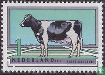 Nederlandse Rundveerassen