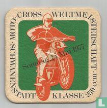 Moto-Cross Weltmeisterschaft Schwanenstadt Klasse 250 ccm / Columbus