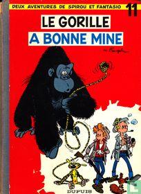 Le gorill a bonne mine