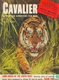 Cavalier 43
