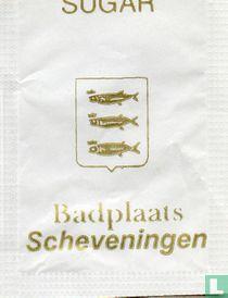 Badplaats Scheveningen