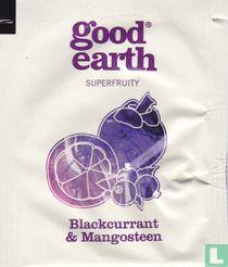 Blackcurrant & Mangosteen