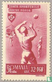 Sport - Volleybal