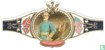Generaal Robert Lee aanvoerder van de Zuidelijke