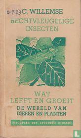 Rechtvleugelige insecten