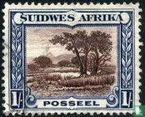 Boslandschap (afrikaans)