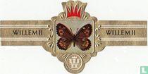 06 Schmetterlinge I 2319/2354 zigarrenbänder katalog