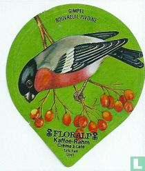 Vögel - Gimpel
