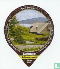 Schwarzwald 1 - Beim Schluchsee