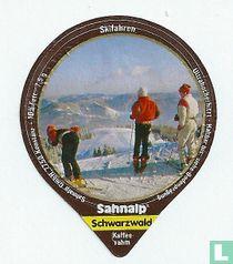 Schwarzwald 1 - Skifahren