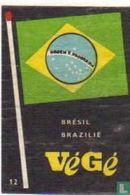 vlag Brazilië