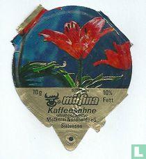Milfina - Spoenlein