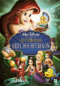 Ariel, hoe het begon