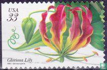 Tropische Pflanzen