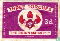 Three Torches 3d