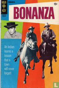 Bonanza 35
