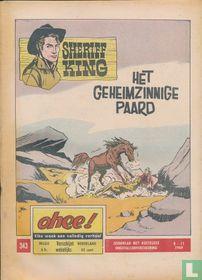 Het geheimzinnige paard