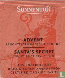 6 ADVENT Früchte-Gewürzteemischung | SANTA'S SECRET Fruit Spice Tea Blend