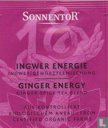 18 INGWER ENERGIE Ingwer-Gewürzteemischung | GINGER ENERGY Ginger Spice Tea Blend