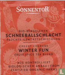 15 Bio-Bengelchen SCHNEEBALLSCHLACHT Früchte-Gewürzteemischung   Cheeky Cherubs WINTER FUN Fruit Spice Tea Blend