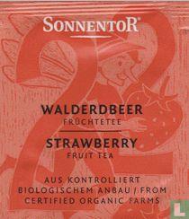 22 WALDERDBEER Früchtetee | STRAWBERRY Fruit Tea