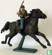 Cavalerist