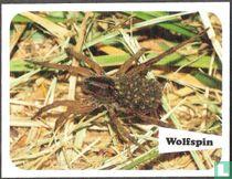 Wolfspin