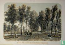 Gezigt op de Landhuizen Oranjewoud en Oranjestein