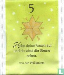 5 Winterstern